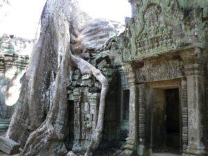 temples Angkor Wat Siem Reap